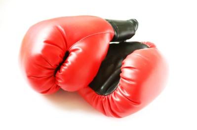 sport boxen heute